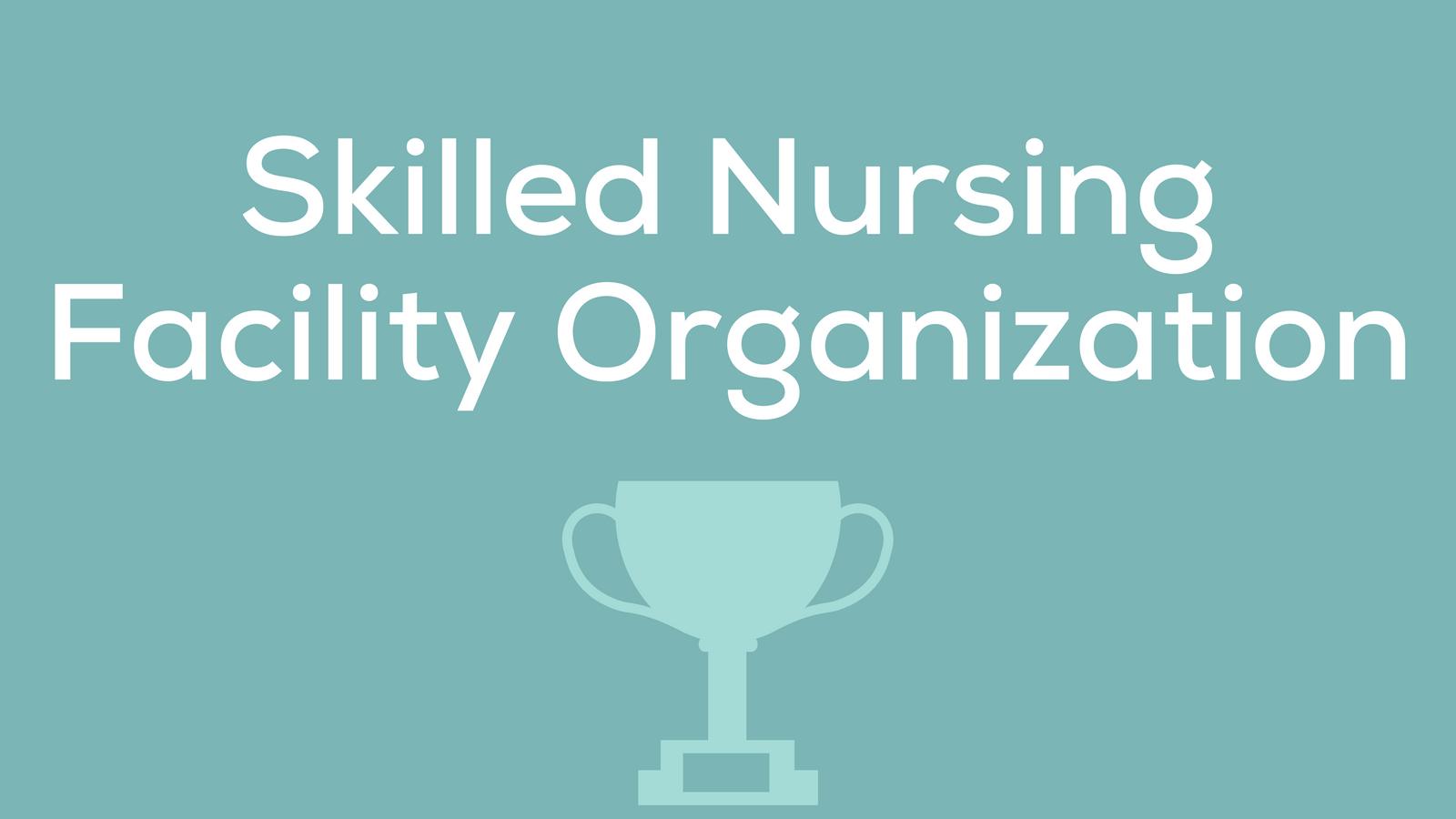 CS - Skilled Nursing Facility Organization.png